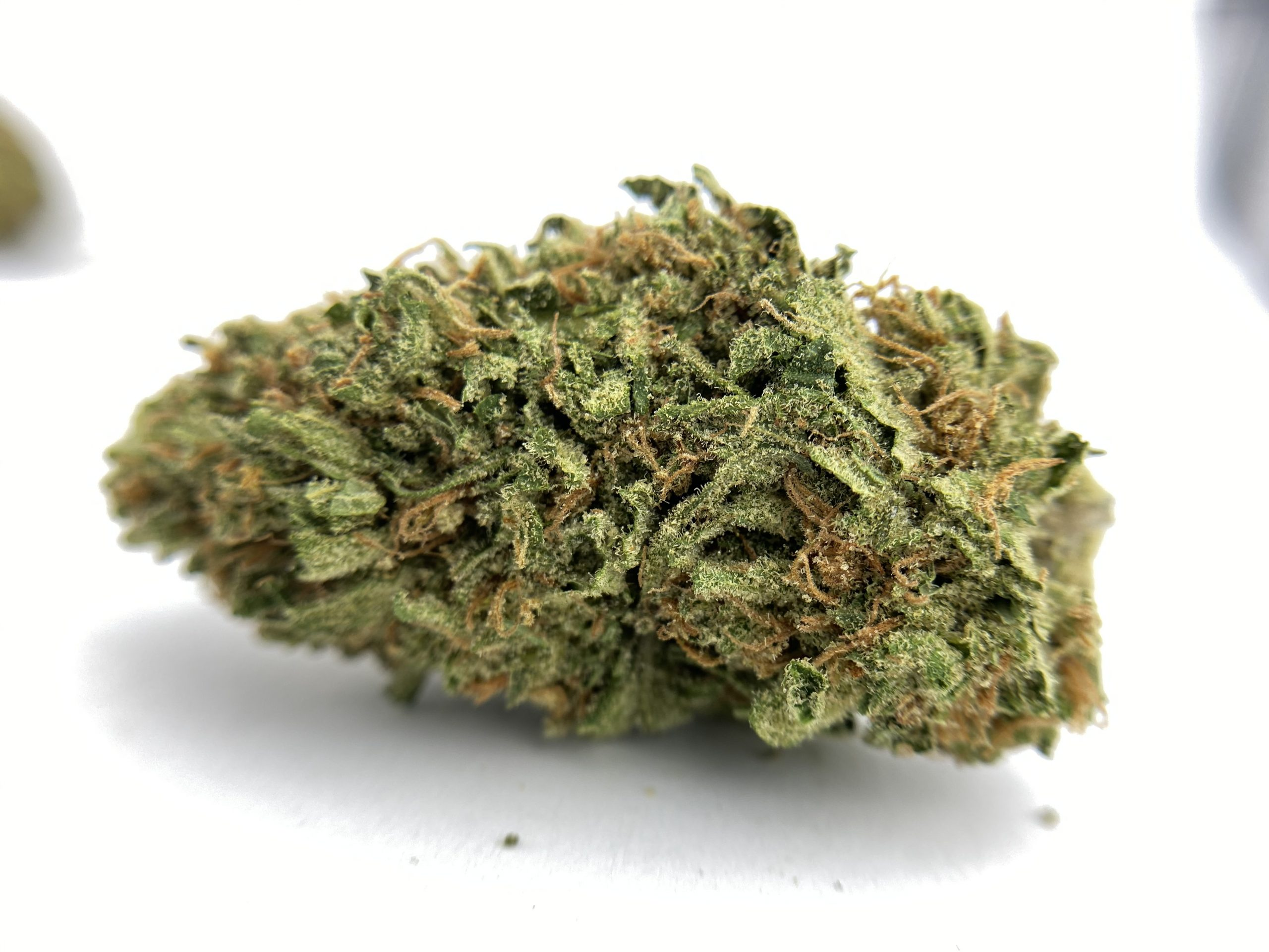 9Lb Hammer Cannabis Products