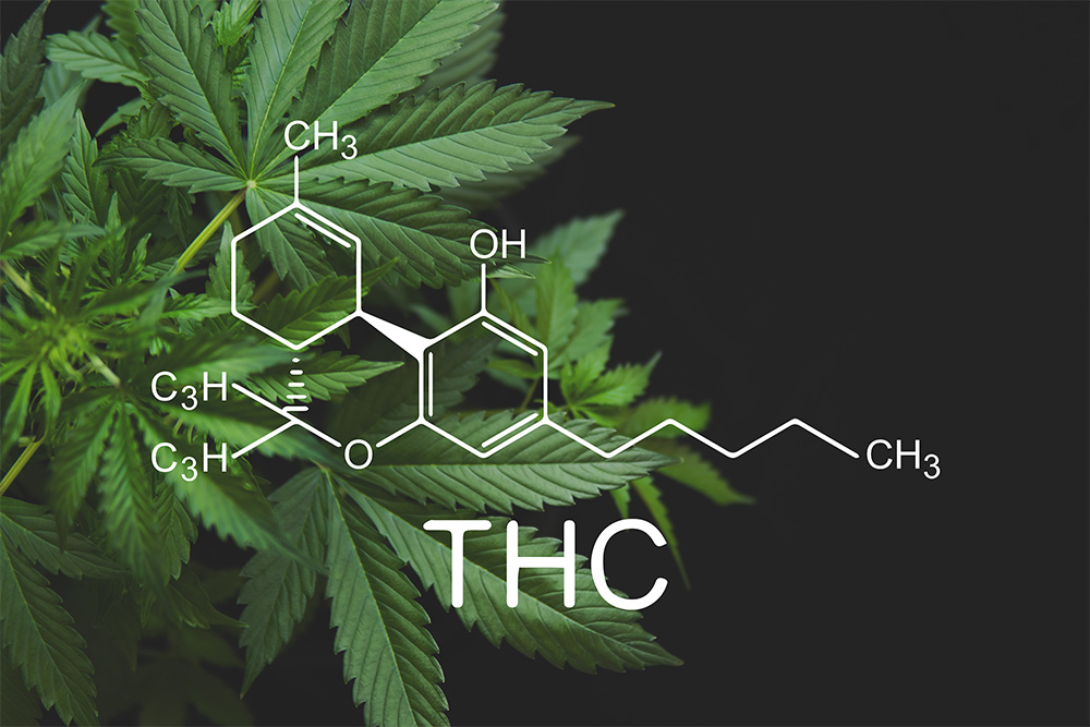 What Are Cannabinoids? A Formal Introduction