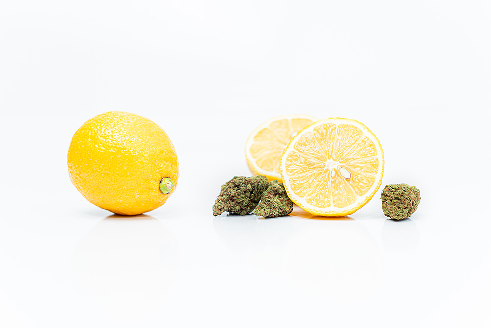 What Is Limonene And How Does It Affect Cannabis Strains